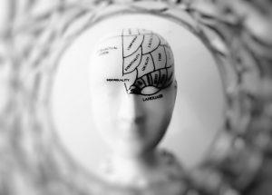 cerebro-regiones